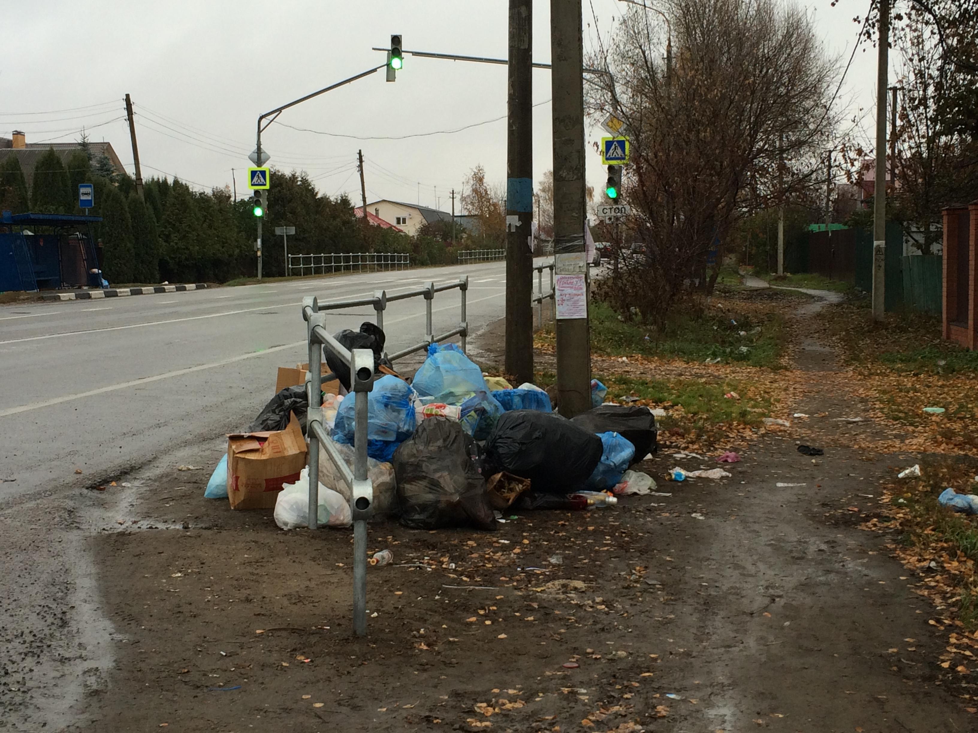 По предписанию Минэкологии навалы мусора в Чеховском районе устранены за три дня