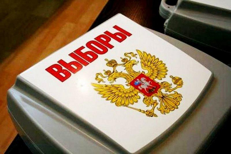 Народные дружины, казаки и ЧОПы привлекают к обеспечению выборов