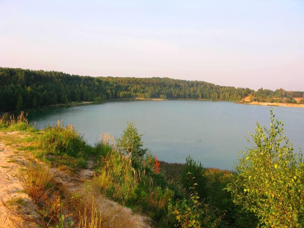 «Береговой десант» расчистит прибрежную зону озера Волкуша в Лыткарино